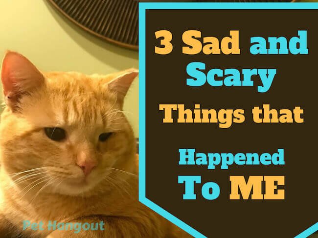 3 Sad and Scary Things That Happened To Me