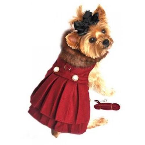 Pretty dog coat.
