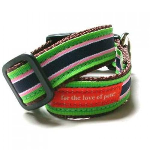 trendy dog leash collar