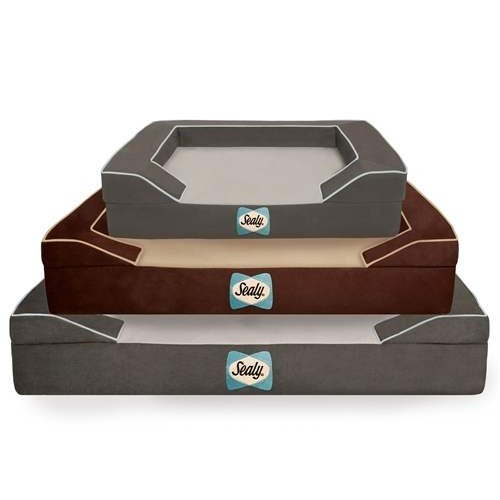 Sealy dog bed for support