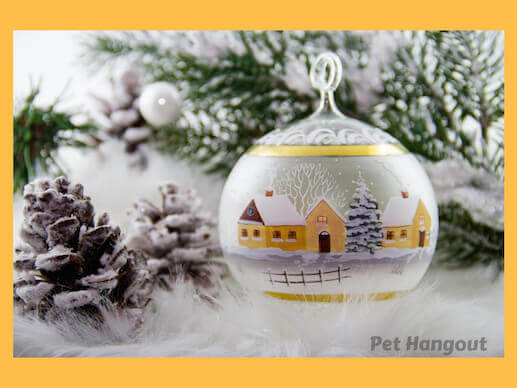 Glass ornaments can be dangerous to your pets.