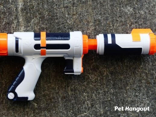 Play water gun with your dog to keep cool.